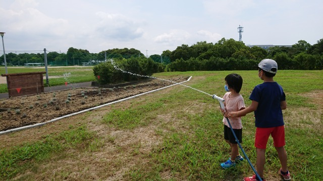 富浜緑地に花壇ができました!_d0338682_12495713.jpg