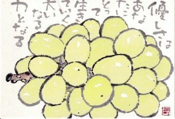 シャインマスカット・優しさ_a0030594_23212917.jpg