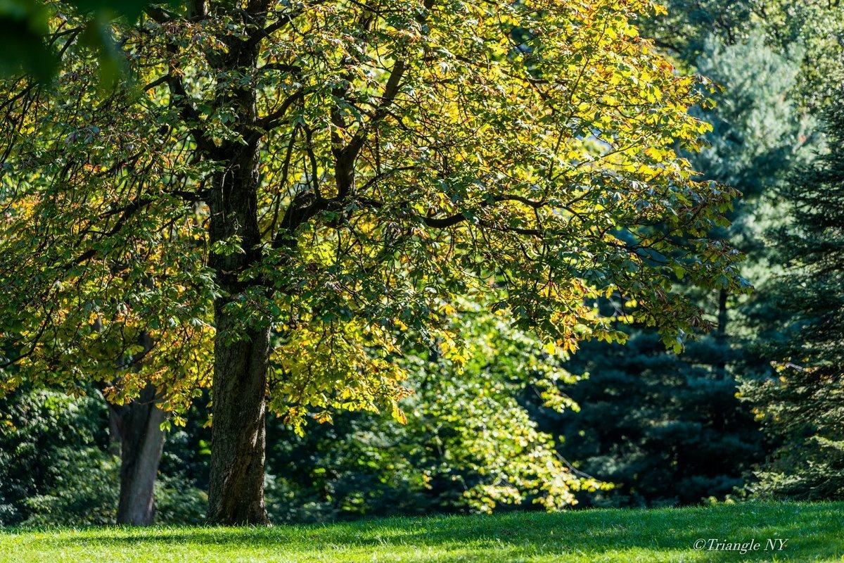 今年もここに秋が来る_a0274805_23430656.jpg