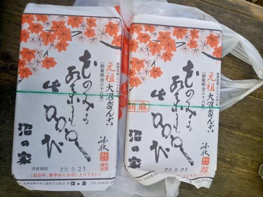 函館旅行記(3)大沼へ、五稜郭へ_c0218425_22330247.jpg