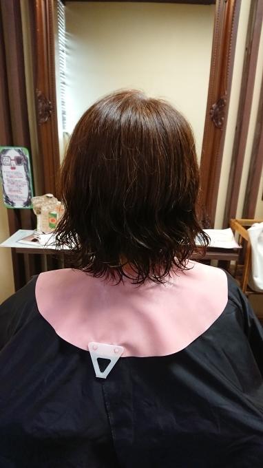 私が髪を切ったのは(´∀`)_c0350439_21181210.jpg