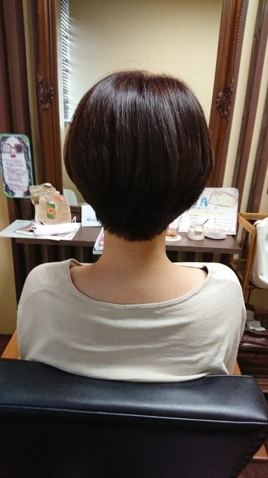 私が髪を切ったのは(´∀`)_c0350439_21192475.jpg