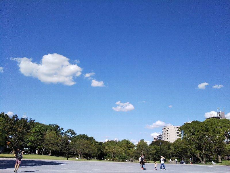 隅田川橋巡り散歩☆ミズマチから_a0355365_17083686.jpg