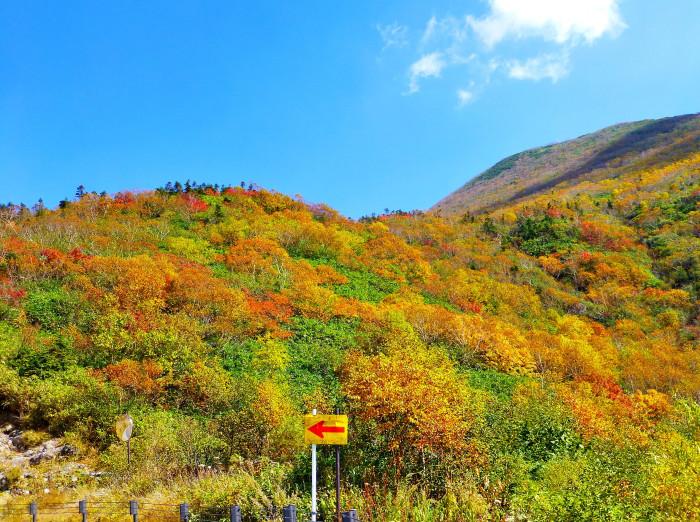 立山徘徊 紅葉を見る3・美松坂~弥陀ヶ原_f0374895_23013495.jpg