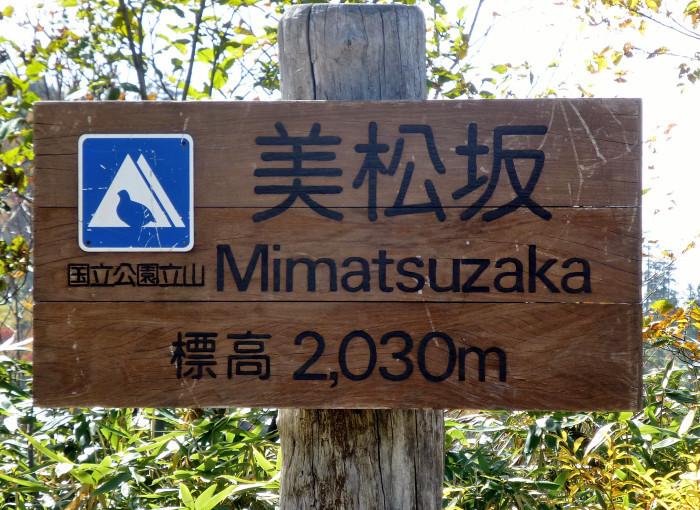 立山徘徊 紅葉を見る3・美松坂~弥陀ヶ原_f0374895_23020541.jpg
