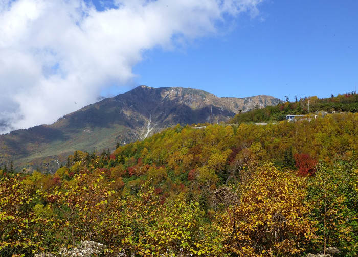 立山徘徊 紅葉を見る3・美松坂~弥陀ヶ原_f0374895_23034417.jpg