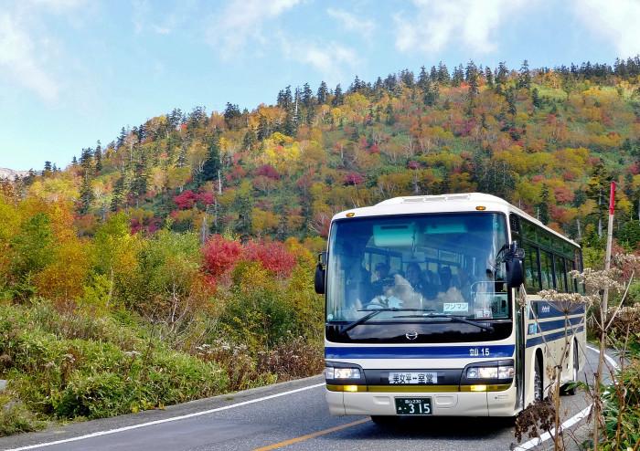 立山徘徊 紅葉を見る3・美松坂~弥陀ヶ原_f0374895_23041881.jpg