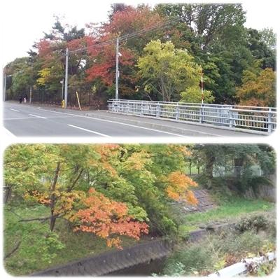 街は秋色に_b0198109_22385853.jpg