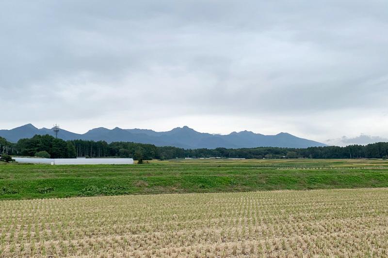 エコーラインで小淵沢へ 2020年10月3日_d0123571_17480982.jpg