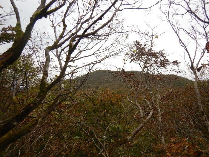 豪士山・砂川本沢左俣 ~ 2020年10月3日_f0170180_08071771.jpg