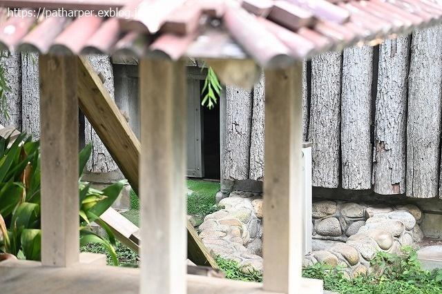 2020年9月 王子動物園2 その5 みゆきさんのオヤツタイム_a0052986_07500088.jpg