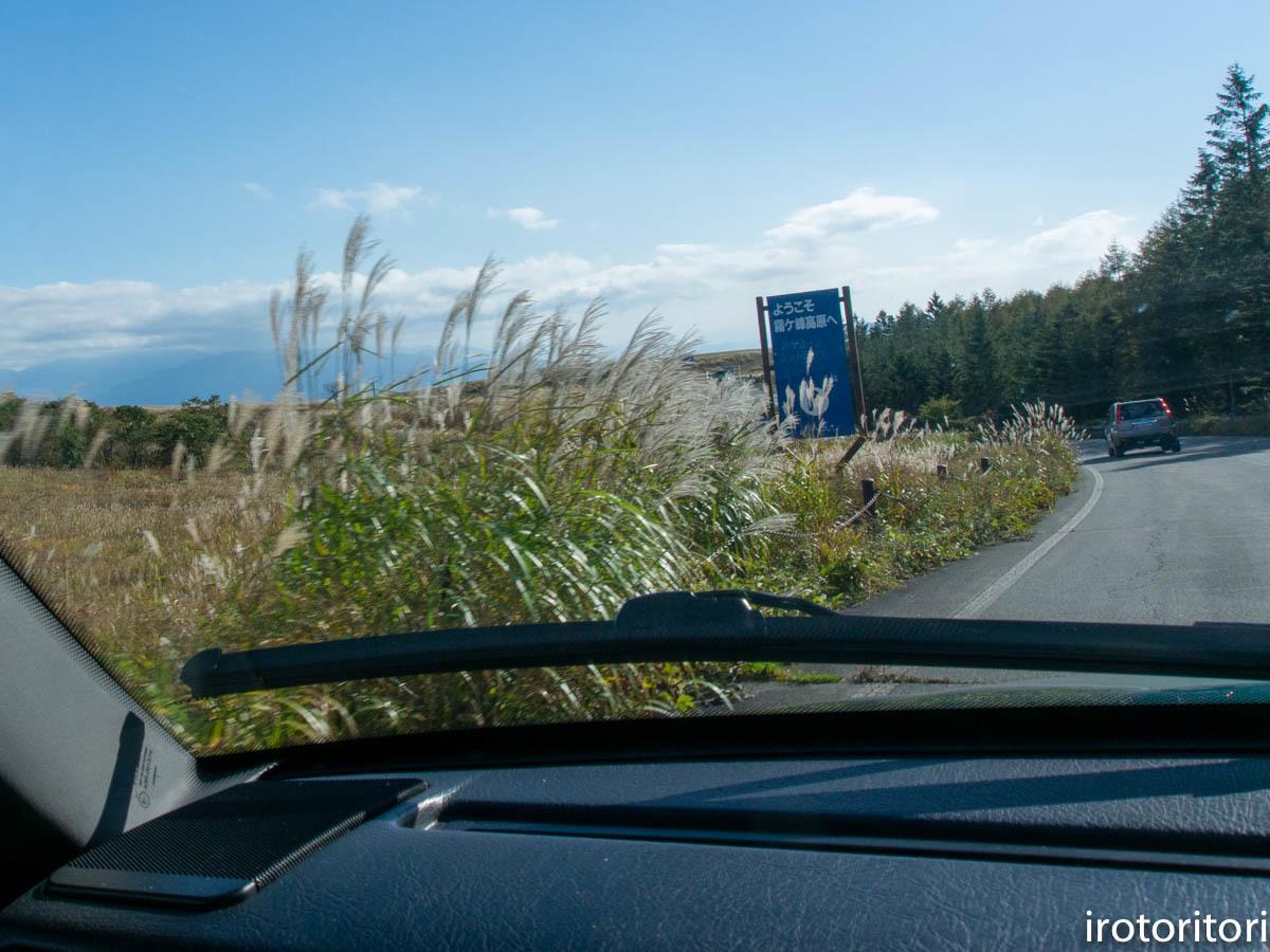 ドライブ  (ノビタキ)  2020/10/06_d0146592_23112104.jpg