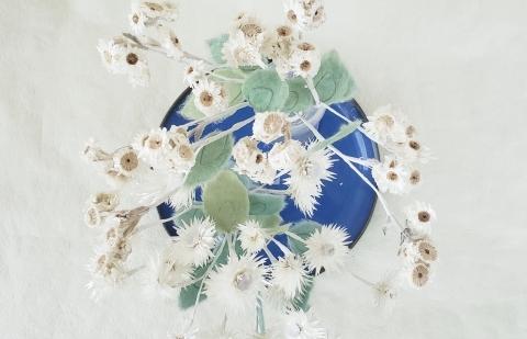 秋の母の日 花材その1_a0101801_13564377.jpg
