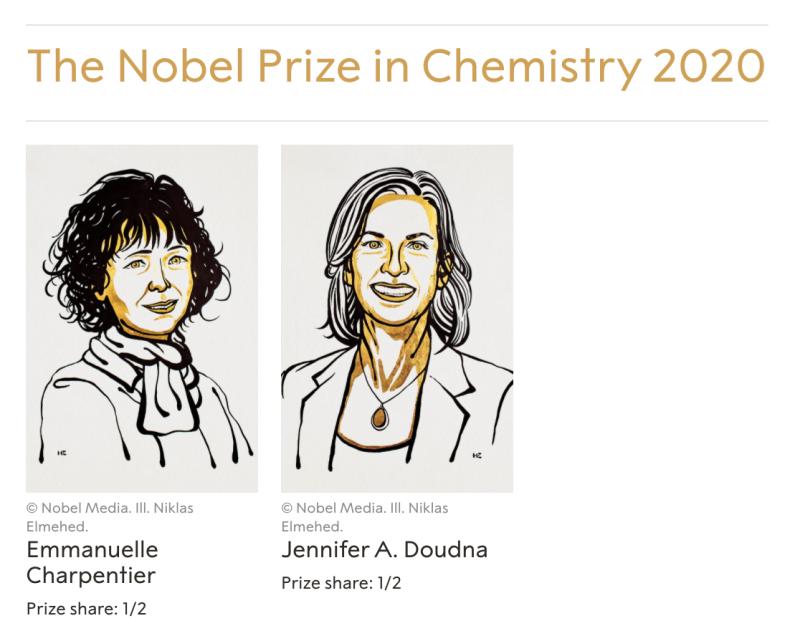 祝! 2020年のノーベル化学賞は2名の女性科学者へ_d0028322_20284983.png