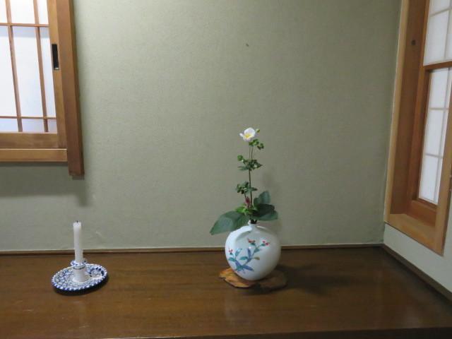 名の如く、秋の花・秋明菊_f0329849_22482445.jpg