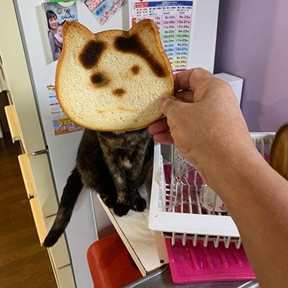 ねこねこ食パンをナナクロパンにする。_a0028451_17072734.jpg