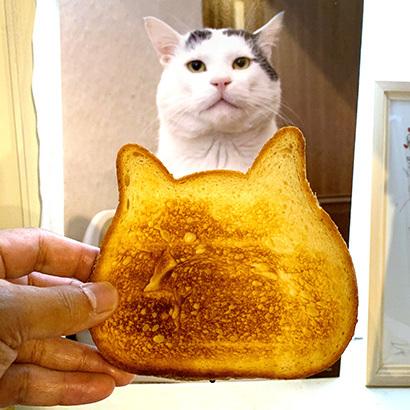 ねこねこ食パンをナナクロパンにする。_a0028451_17145306.jpg