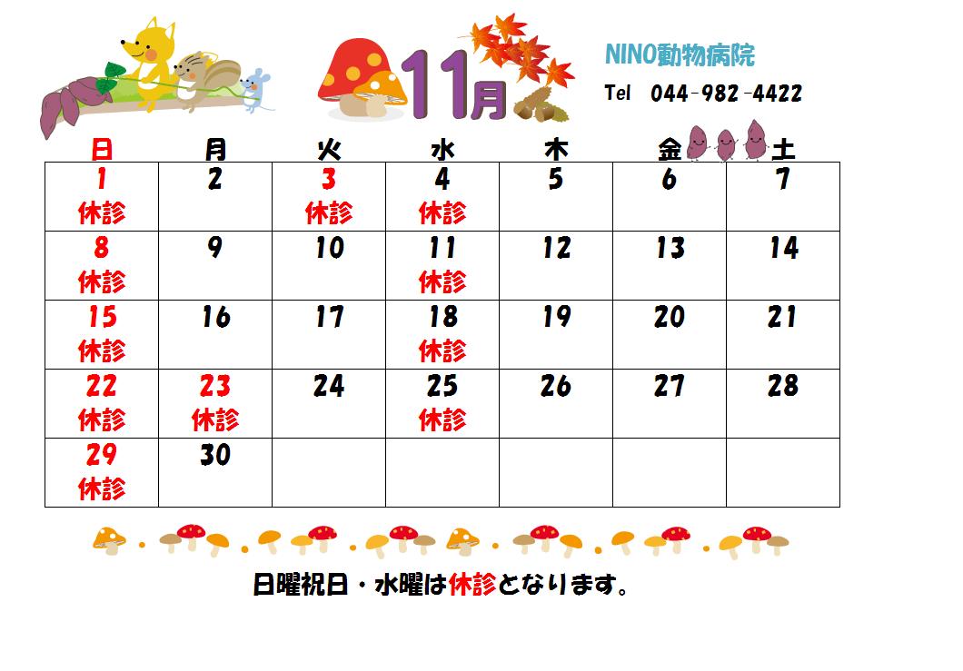 11月の診療日のお知らせ☆_e0288670_13190202.png