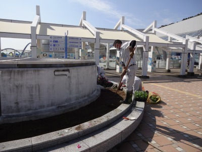 名古屋港水族館前花壇の植栽R2.10.7_d0338682_11082128.jpg