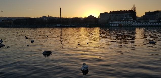 プラハのモルダウ川ぶらり散歩_f0401091_21490059.jpg