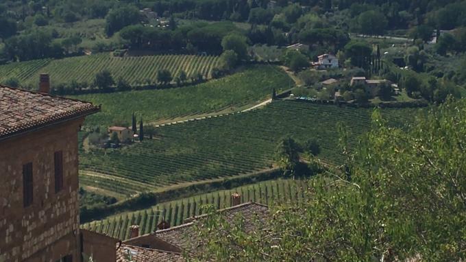 ワインの宝庫モンテプルチア-ノ_c0260942_00510826.png