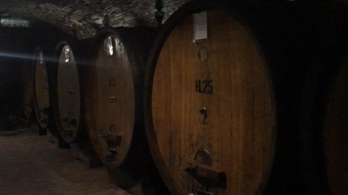 ワインの宝庫モンテプルチア-ノ_c0260942_01010337.png