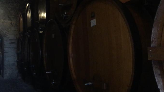 ワインの宝庫モンテプルチア-ノ_c0260942_01080592.png