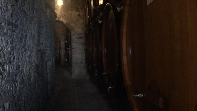 ワインの宝庫モンテプルチア-ノ_c0260942_01104377.png