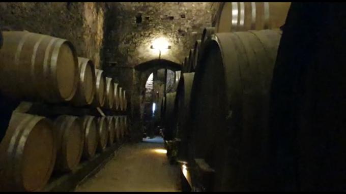 ワインの宝庫モンテプルチア-ノ_c0260942_01124688.png