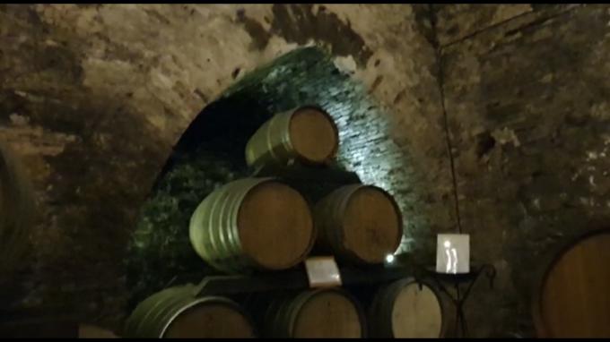 ワインの宝庫モンテプルチア-ノ_c0260942_01141914.png