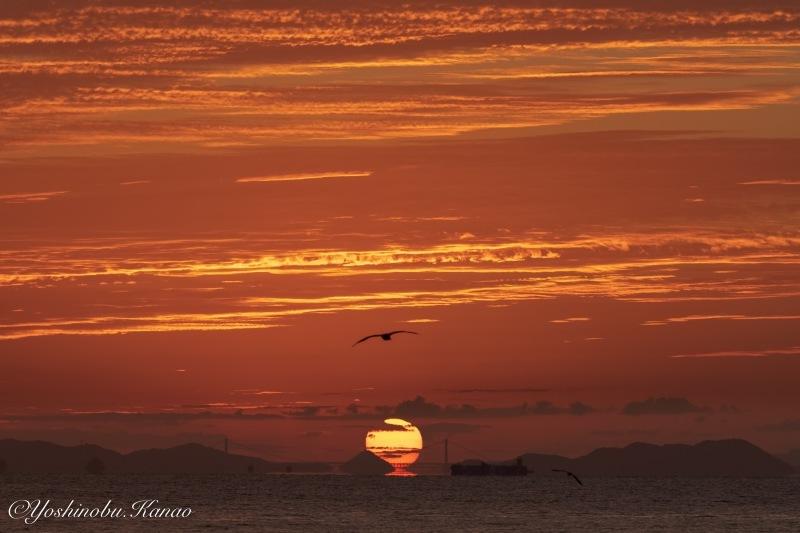 神島水落のだるま朝日_b0222467_23134592.jpg