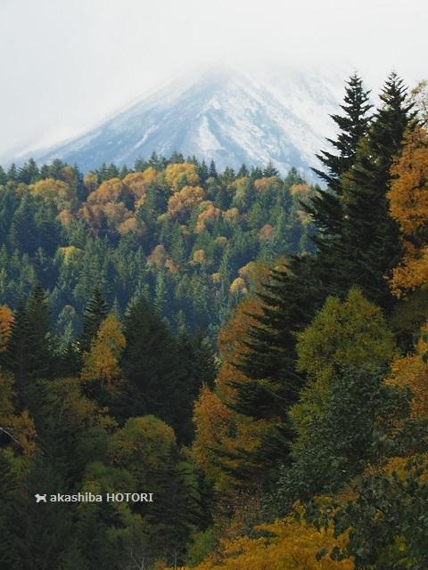 凄すぎる三国峠 *10月7日ふたり旅のつづき_f0150377_17212979.jpg