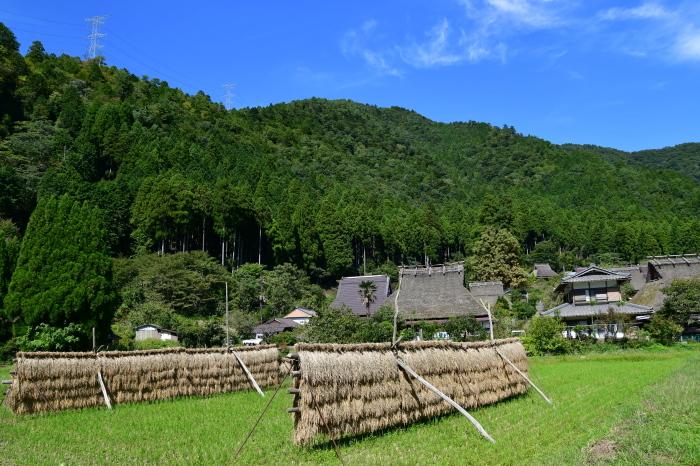 美山徘徊2020 秋の茅葺を見る2_f0374895_00302008.jpg