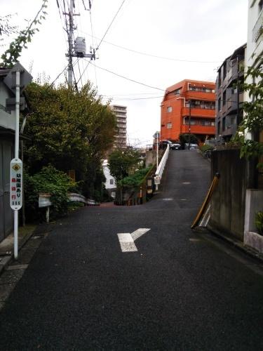 上野 Hard Rock CAFE~国立科学博物館_c0337631_18425433.jpg