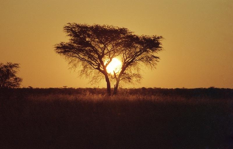 アフリカの記憶 151_d0010432_16203373.jpg