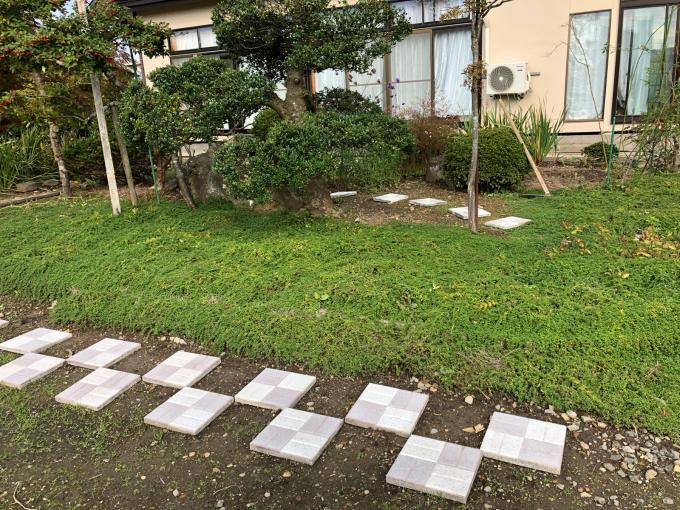 秋のお花_b0093660_18452428.jpg