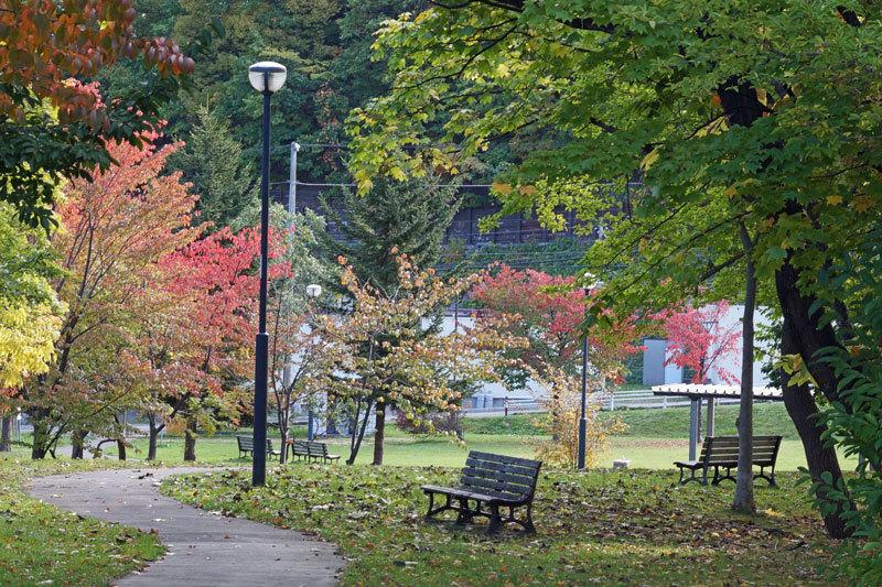 散歩中で紅葉探し_d0162994_12294663.jpg