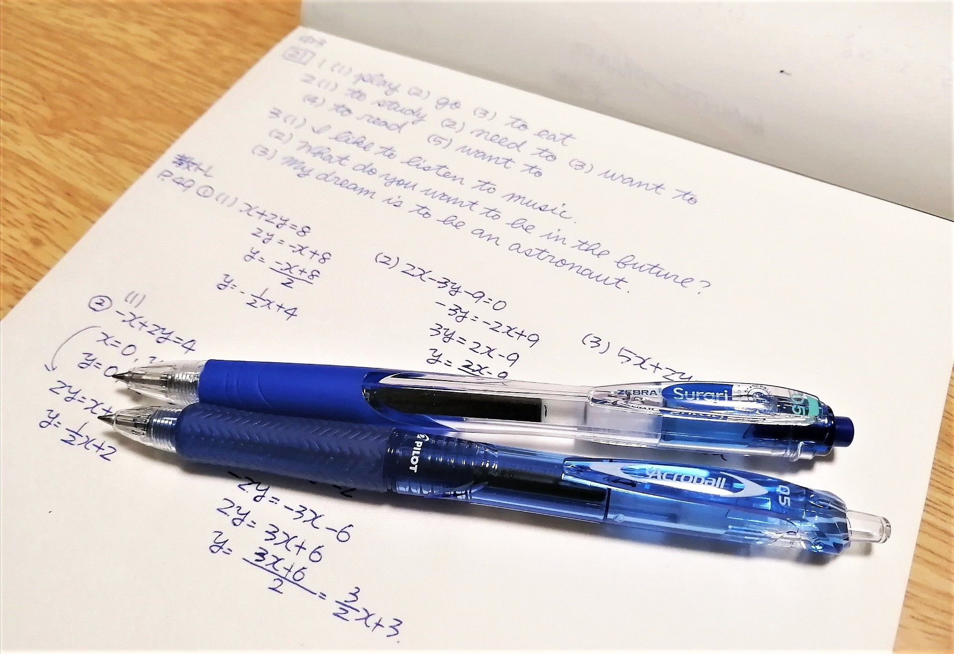 油性の青ボールペンの魅力を考える会・その4(調査方法)。_f0220714_15163996.jpg