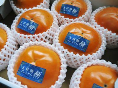 太秋柿 令和2年度の古川果樹園さんの『太秋柿』は収穫できた分だけの出荷で正式販売は中止となりました_a0254656_18551805.jpg