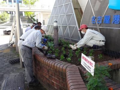 ガーデンふ頭総合案内所前花壇の植替えR2.10.12_d0338682_16381059.jpg