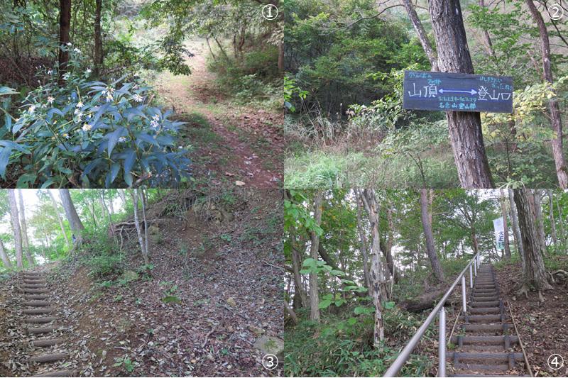 大名倉山へ_d0015026_17312770.jpg