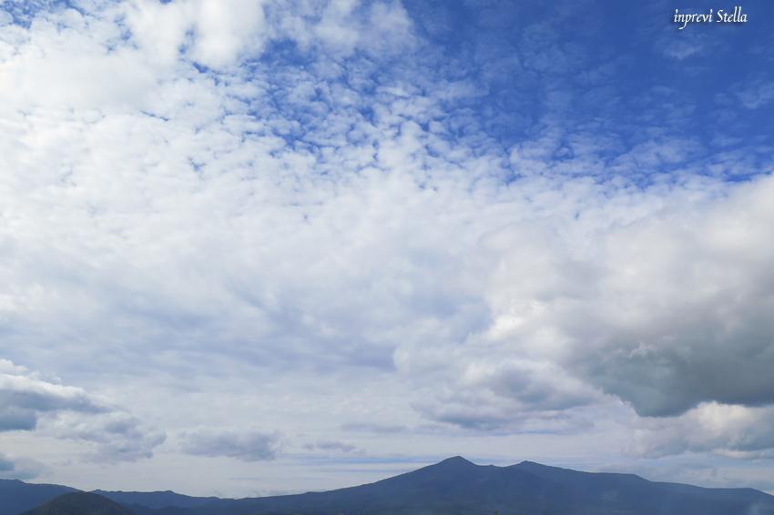 大名倉山へ_d0015026_17321987.jpg
