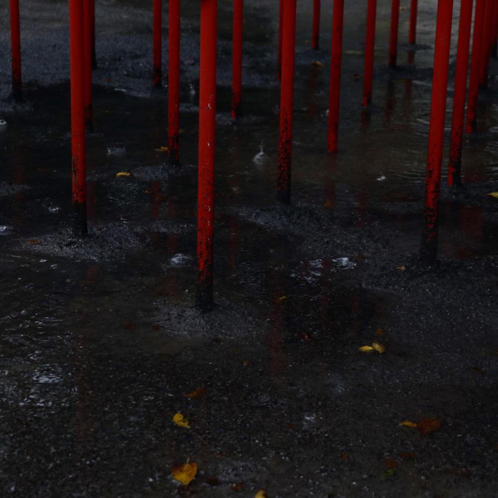 雨の飛鳥山公園_c0060143_23200578.jpg