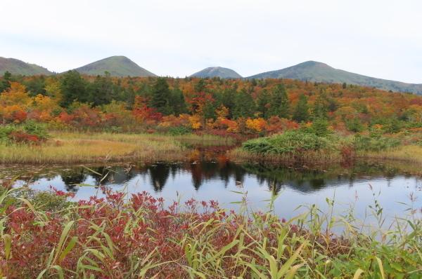 秋が深まって行きます_b0238249_20401289.jpg