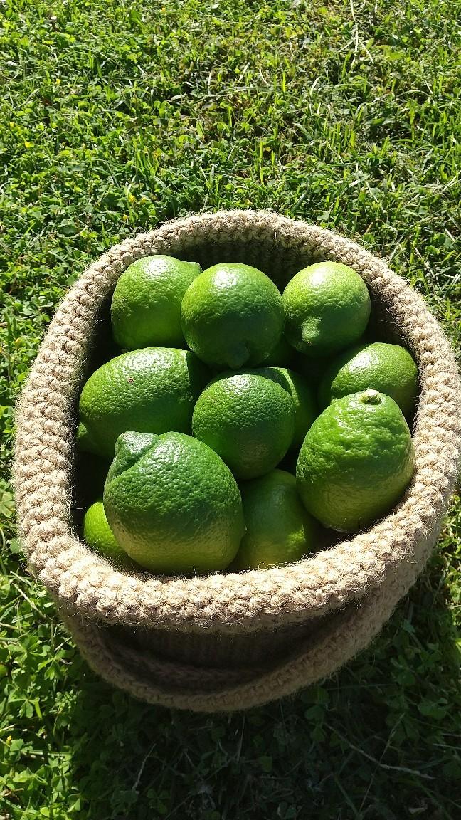 柑橘aroma_b0339572_20020664.jpg