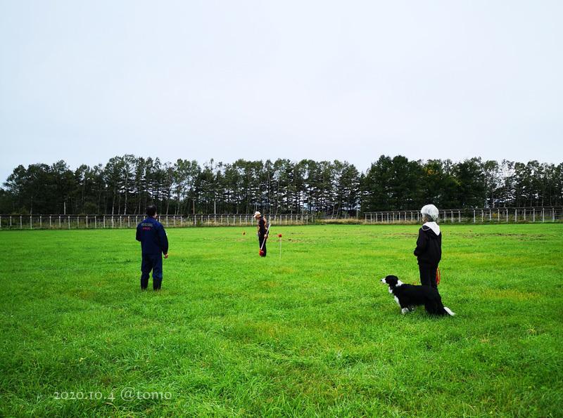 嘱託警察犬指導手会訓練会_f0067179_21570203.jpg