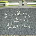 加藤陽子『それでも、日本人は「戦争」を選んだ』 - 侵略戦争の歴史認識の欠如_c0315619_14415776.png