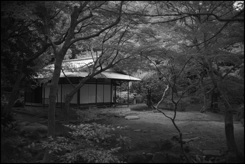 旧古河庭園 -22_b0340572_20421687.jpg