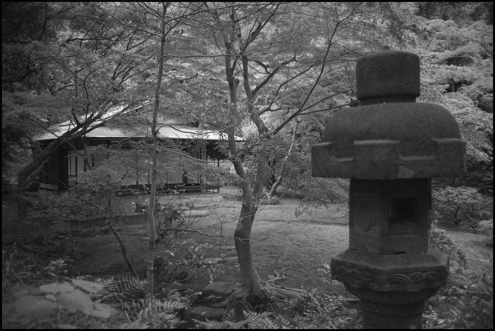 旧古河庭園 -22_b0340572_20422582.jpg