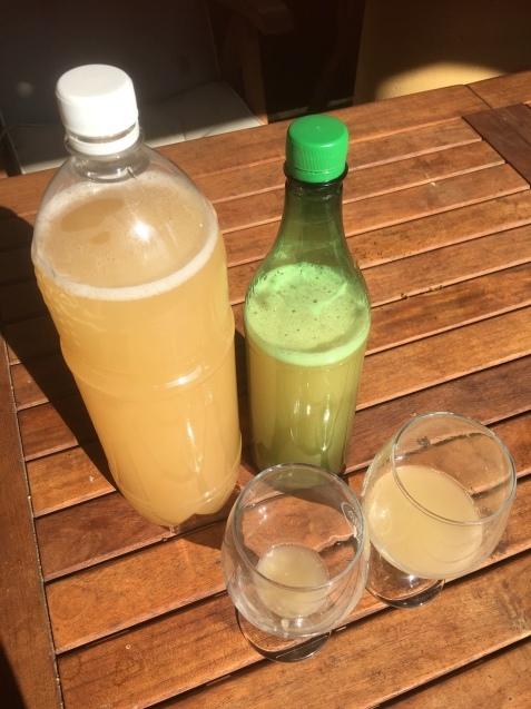 チェコの旬の飲み物「ブルチャーク」_f0401091_17062304.jpg